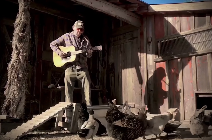 Watch Neil Young Play 'Homegrown' Live from a Chicken Coop