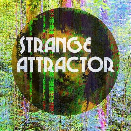 """New Hands """"Strange Attractor"""""""
