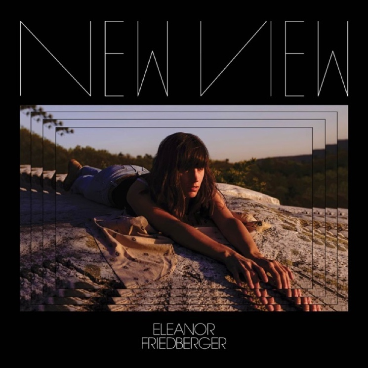 Eleanor Friedberger Unveils 'New View' LP, Shares Single