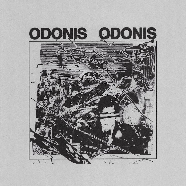 Odonis Odonis Plot North American Fall Tour