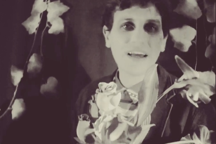 """The Pains of Being Pure at Heart """"Hell"""" (video)"""