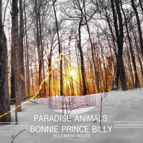 Paradise Animals 'Wolf Among Wolves' (Bonnie 'Prince' Billy cover)