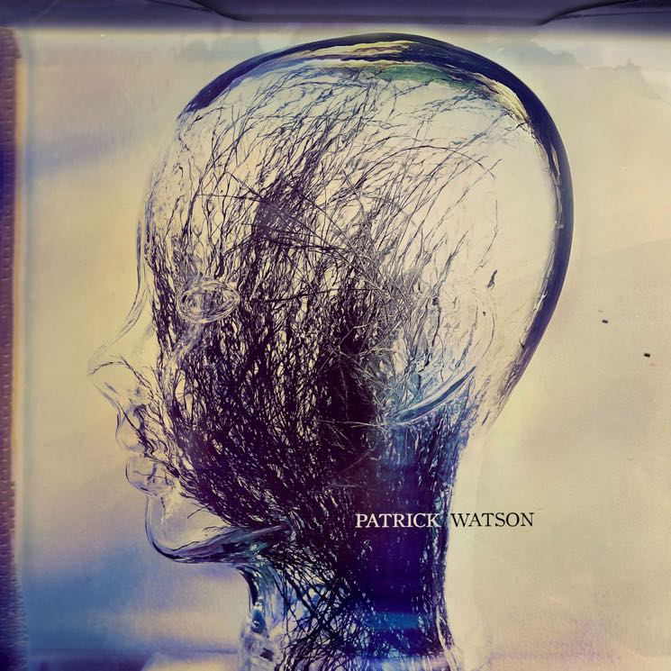 ​Patrick Watson Announces New Album 'Wave'