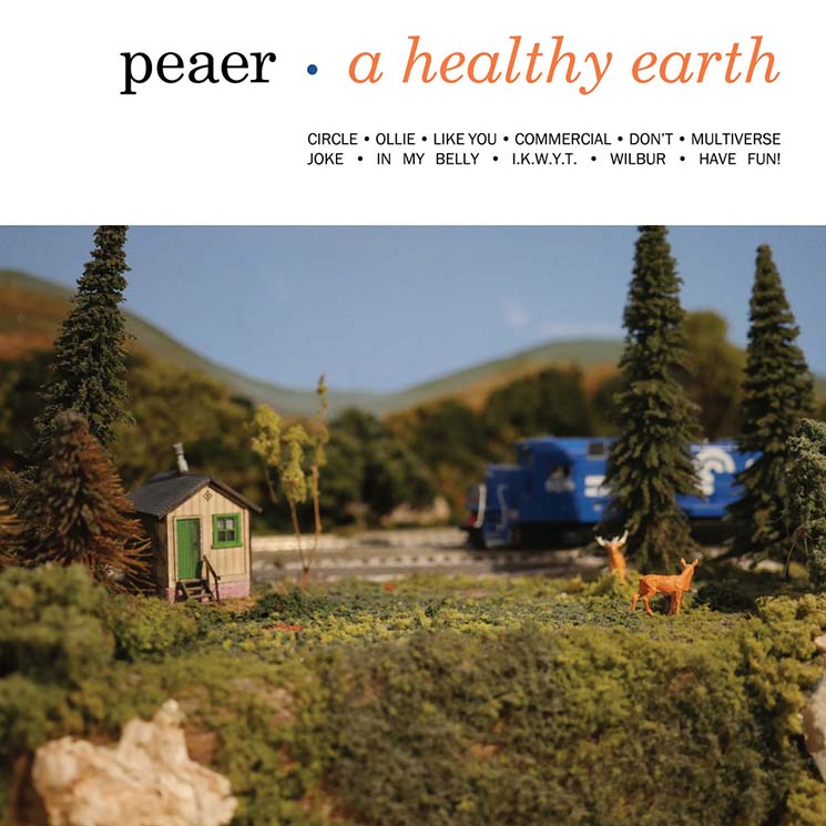 Peaer A Healthy Earth
