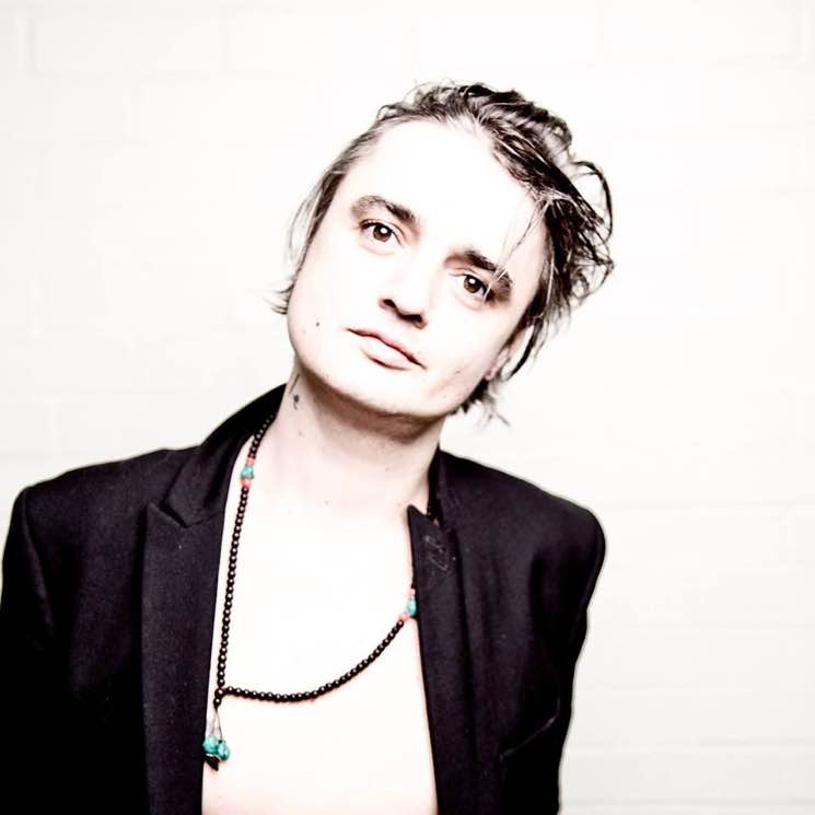 Pete Doherty Unveils 'Hamburg Demonstrations' Solo Album