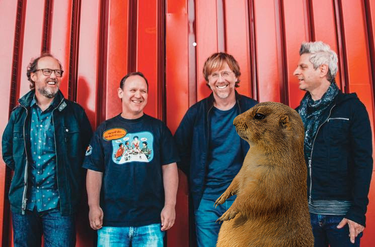 Phish's Labour Day Event Threatened by Plague-Infested Prairie Dogs