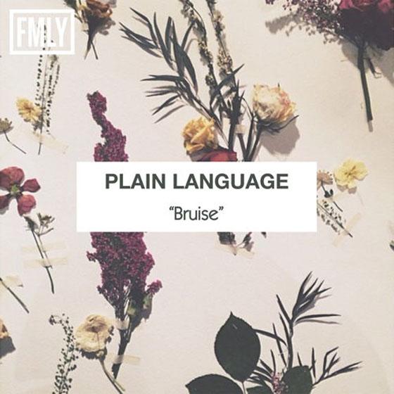 Plain Language 'Bruise'
