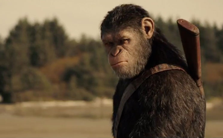 Here's Your First Trailer for 'War for the Planet of the Apes'