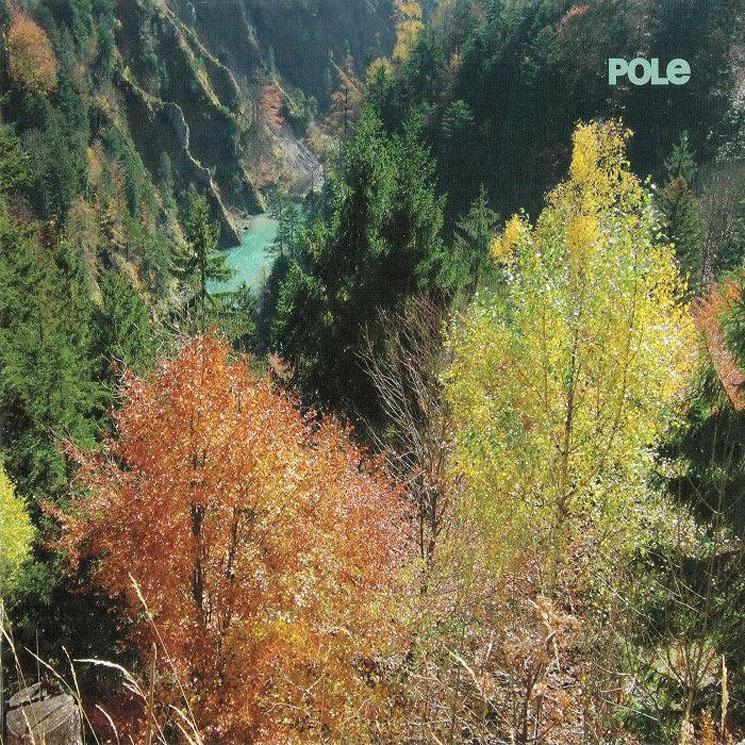 Pole Wald