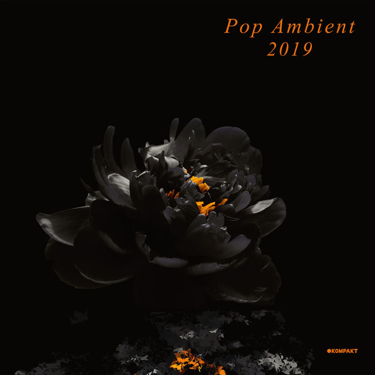 Various Pop Ambient 2019