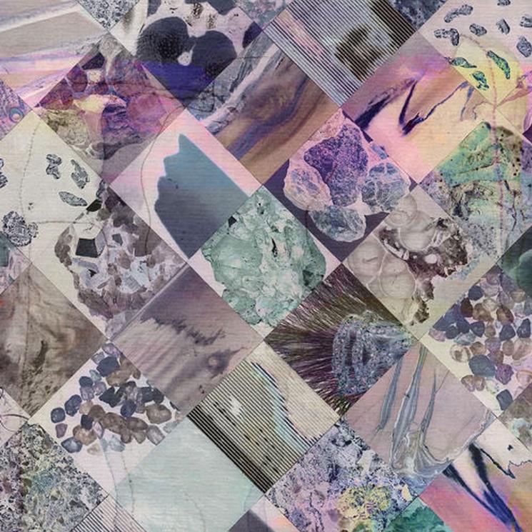 White Poppy Returns with 'Natural Phenomena,' Shares New Track