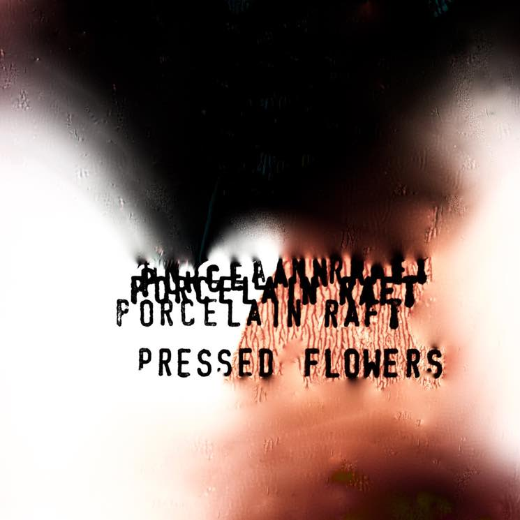 Porcelain Raft Shares Free 'Pressed Flowers' EP