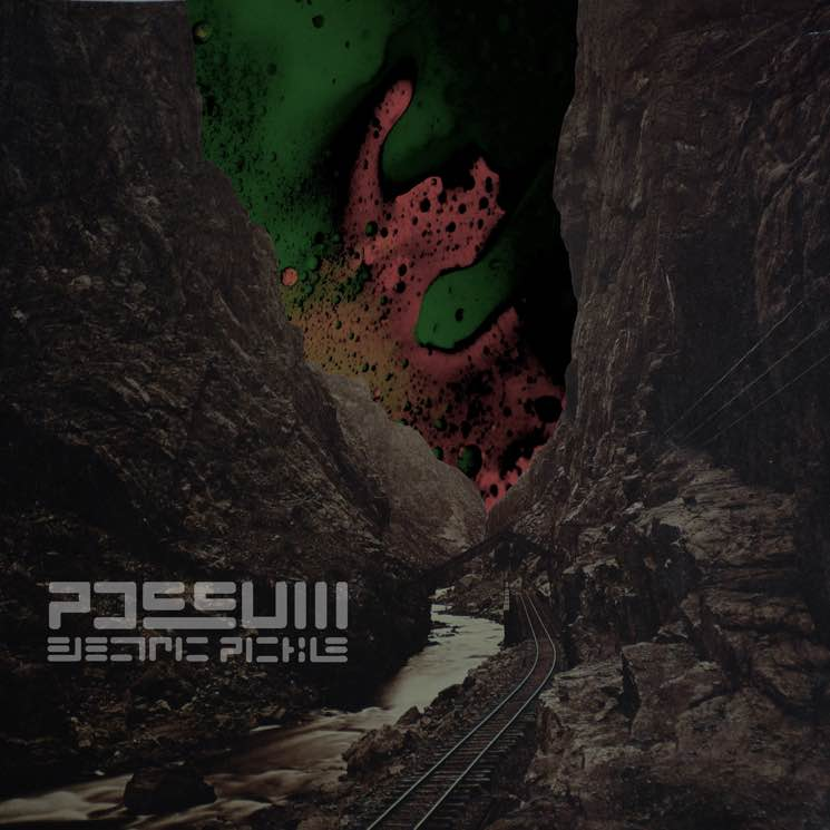 ​Possum 'Electric Pickle' (EP stream)