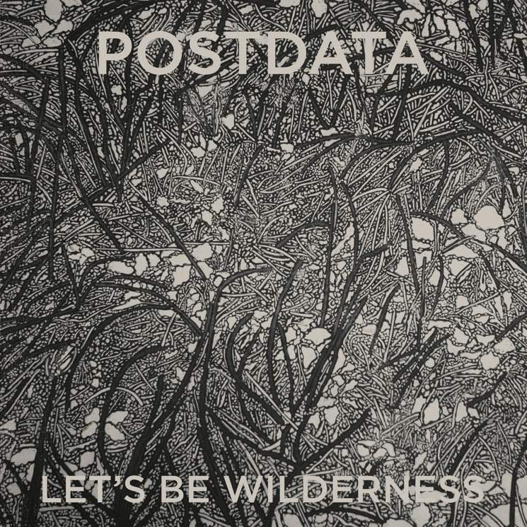 ​Wintersleep's Paul Murphy Plots New Postdata LP, Premieres 'Evil' and 'Black Cloud'