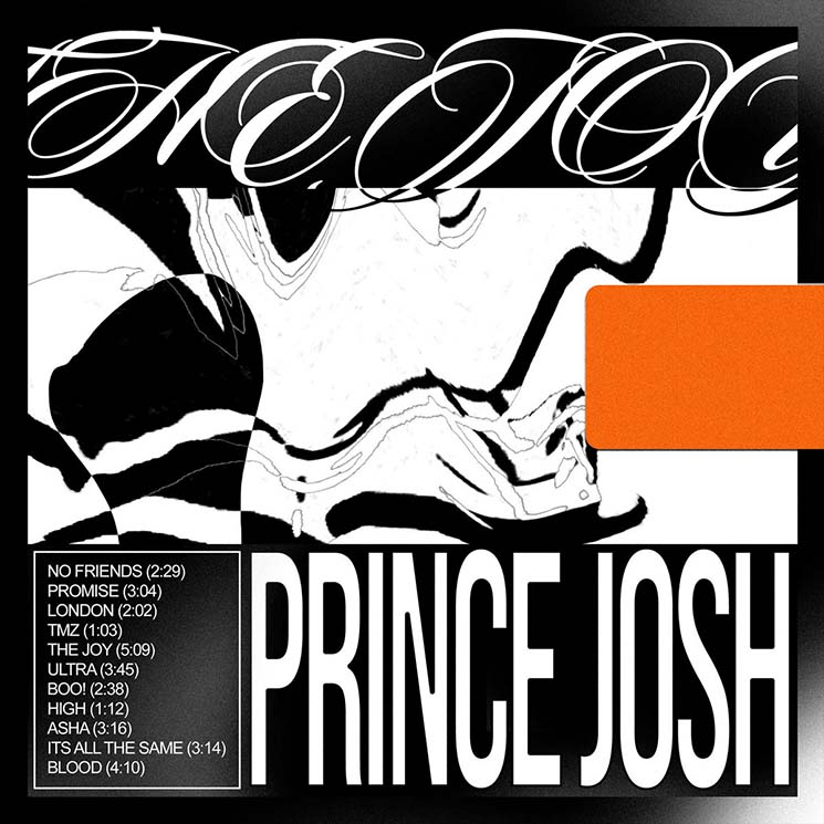 Prince Josh The Joy