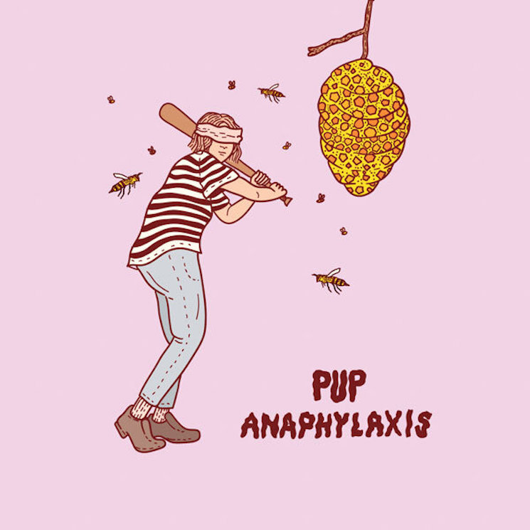 PUP Share New Single 'Anaphylaxis'
