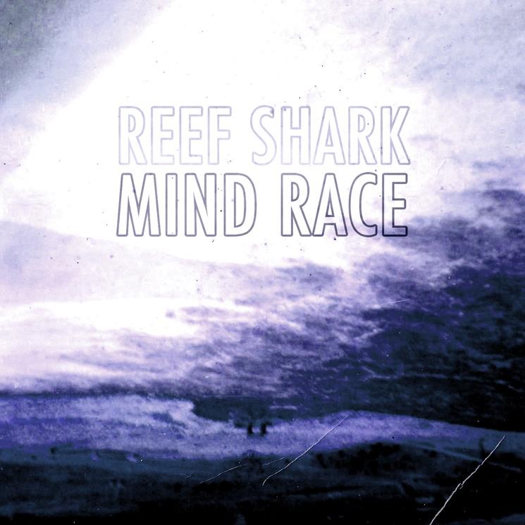 "Reef Shark ""Mind Race"""