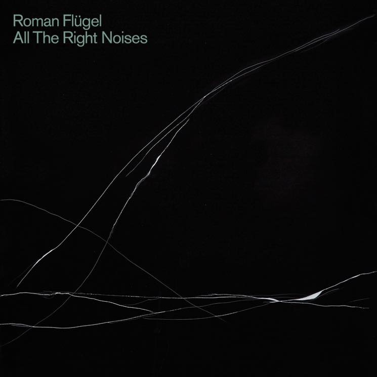 Roman Flügel All The Right Noises