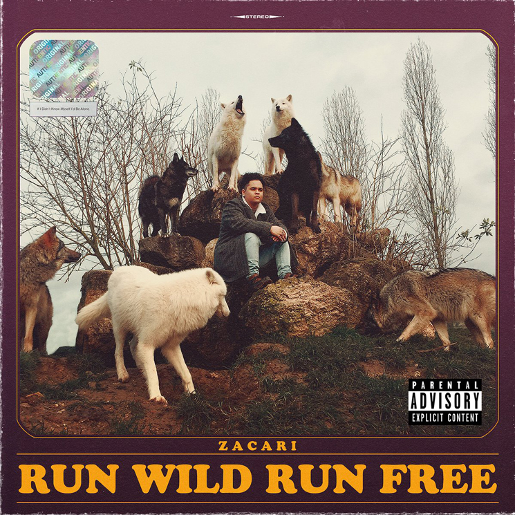 Zacari Announces Debut EP 'Run Wild Run Free'
