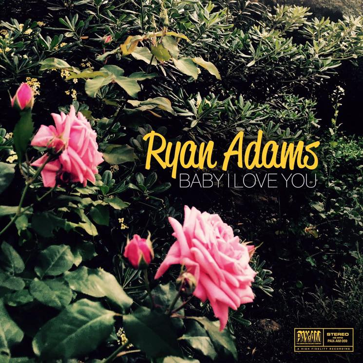 ​Ryan Adams Releases New Single 'Baby I Love You'