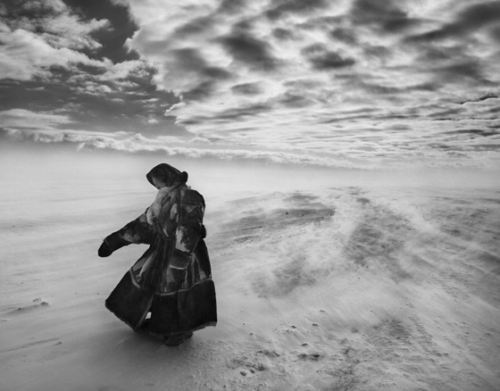 The Salt of the Earth Wim Wenders and Juliano Ribeiro Salgado