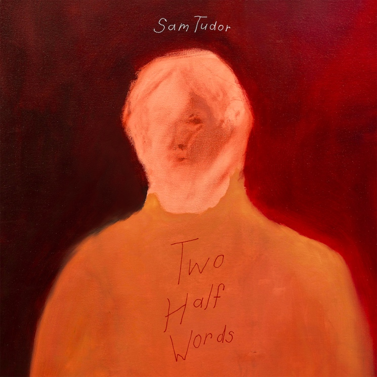 Sam Tudor Goes Beyond Language on 'Two Half Words'