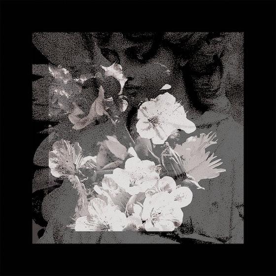 Sanctums 'Migrant Workers' (album stream)