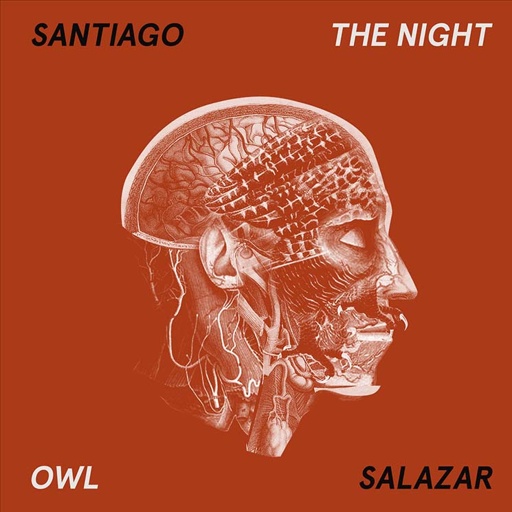 Santiago Salazar The Night Owl