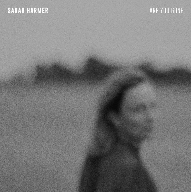 Sarah Harmer Returns with Her First New Album in a Decade