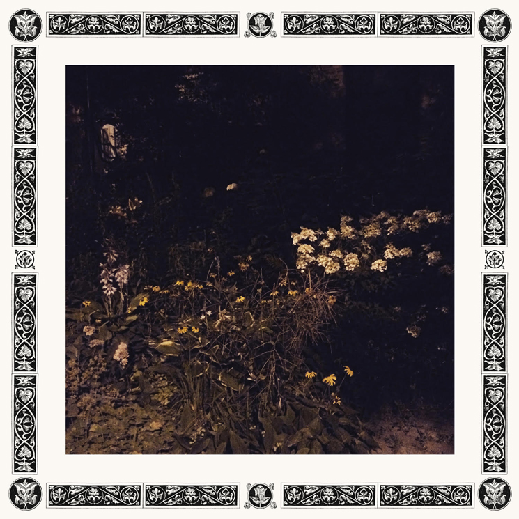 Sarah Davachi Details New Album 'Pale Bloom'