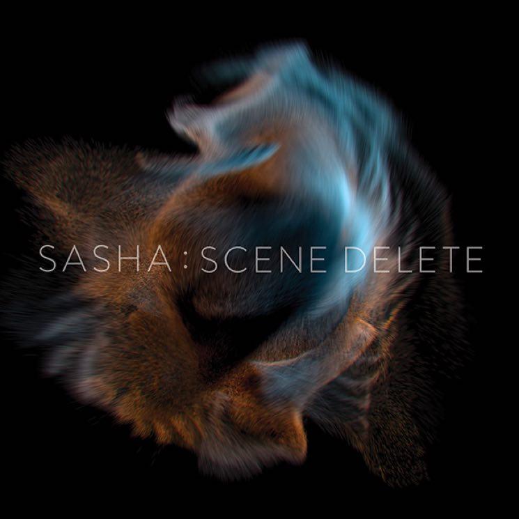 Sasha Scene Delete