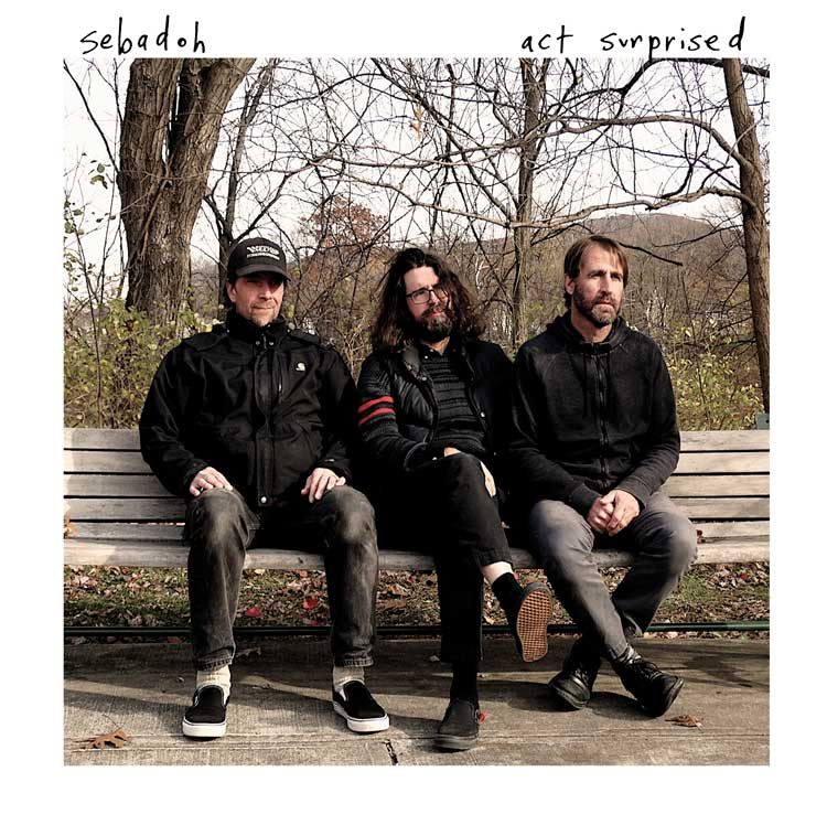 Sebadoh Act Surprised