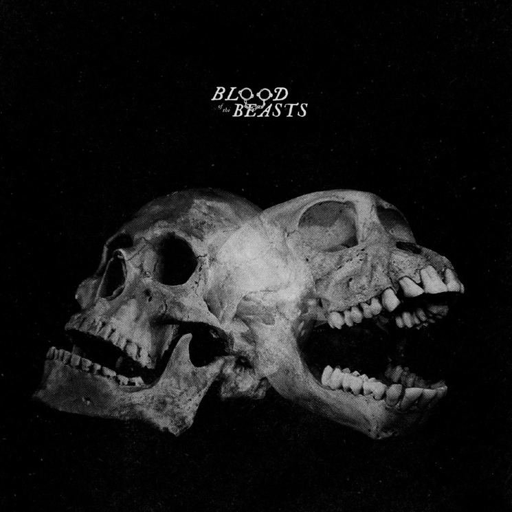 SECT Drop Surprise New Album 'Blood of the Beasts'