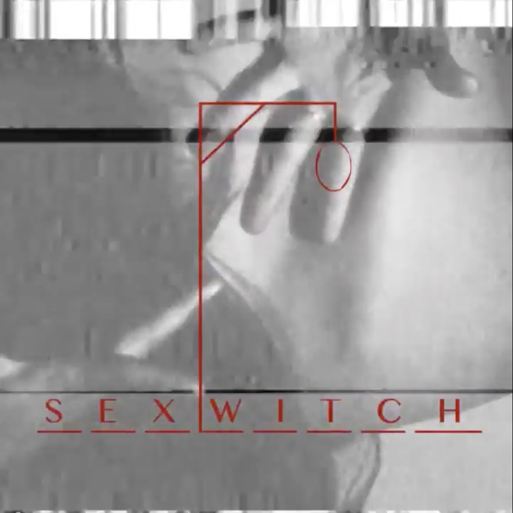 Bat for Lashes and TOY Team Up for New Band Sexwitch