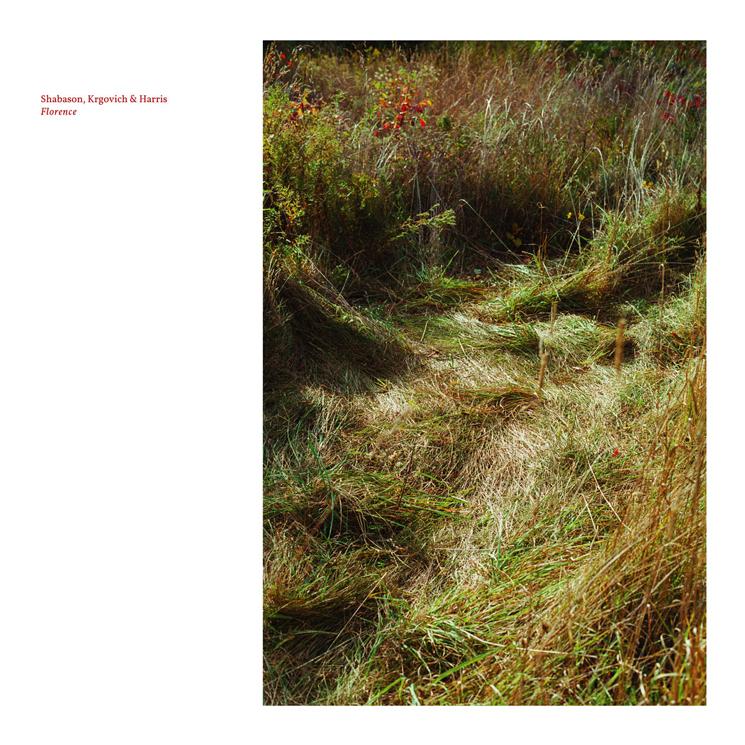 Shabason, Krgovich & Harris Announce Instrumental Album 'Florence'