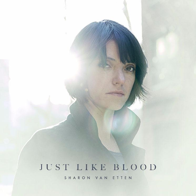 """Sharon Van Etten """"Just Like Blood"""""""