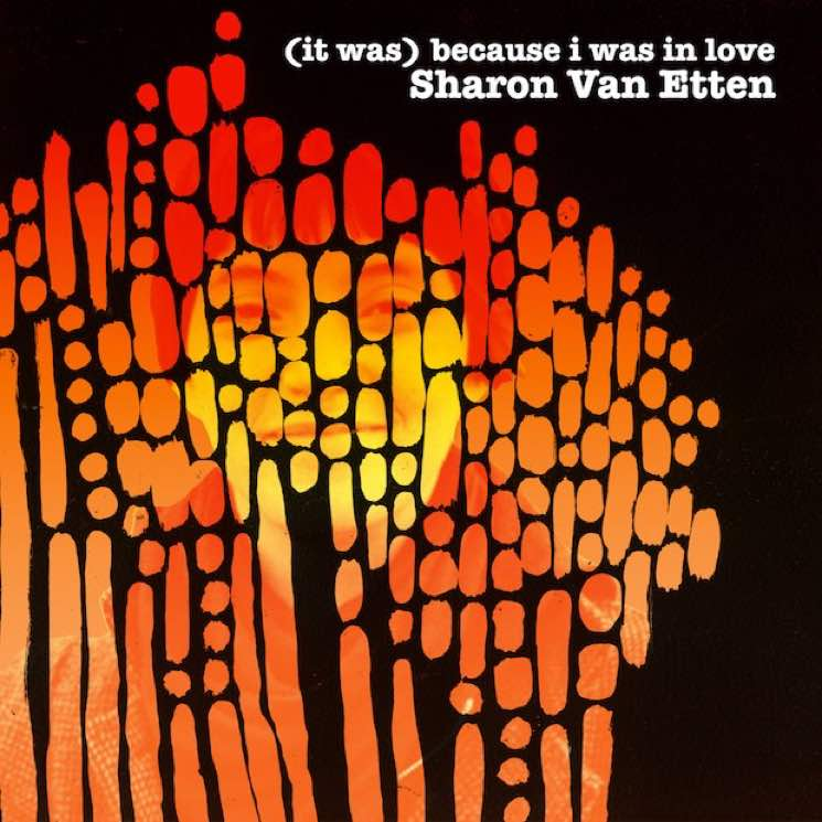 ​Sharon Van Etten Treats Debut LP 'Because I Was in Love' to Reissue