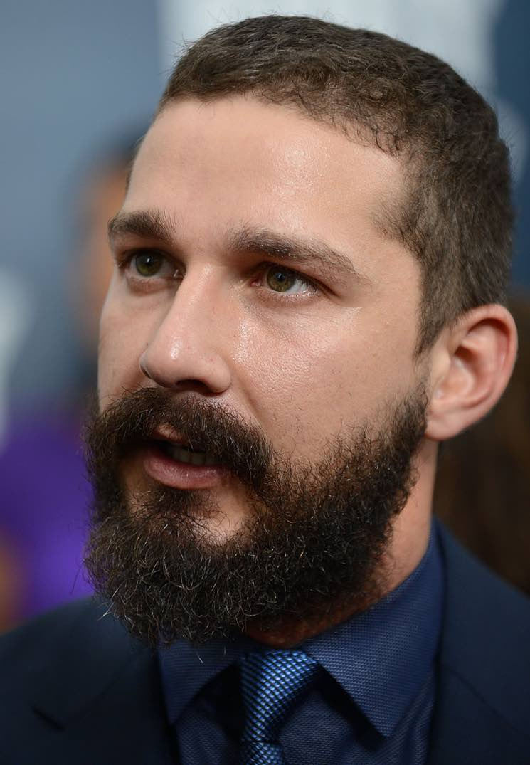 "​Shia LaBeouf Arrested at ""HE WILL NOT DIVIDE US"" Art Installation"