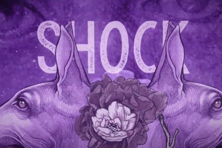 "Baroness ""Shock Me"" (lyric video)"