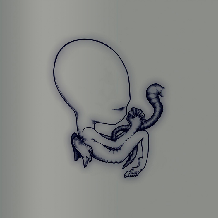 Sigur Rós Treat 'Ágætis Byrjun' to 20th Anniversary Box Set
