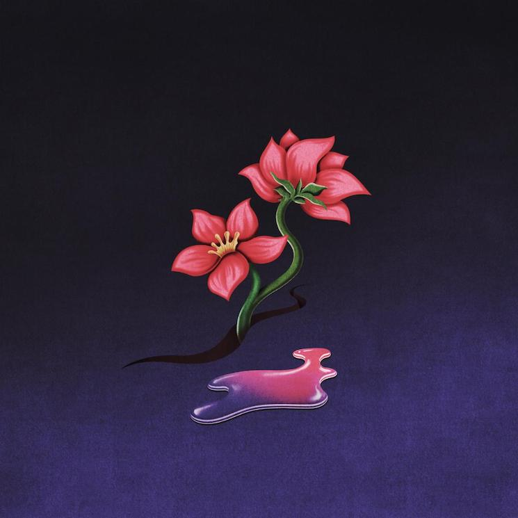 Wavves Returns with 'Sinking Feeling' Single