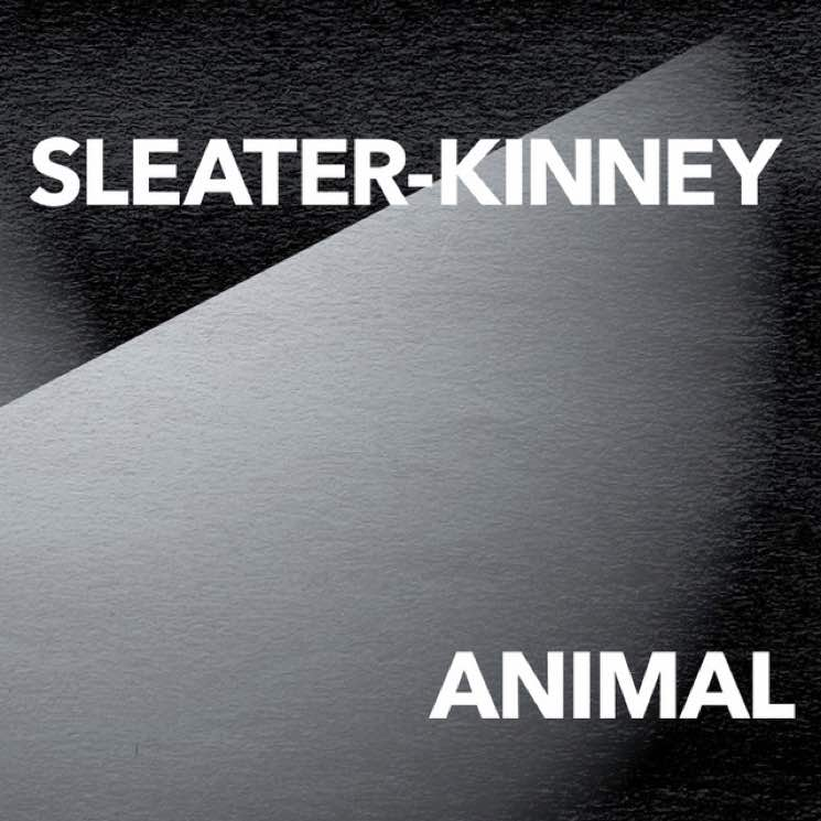 Sleater-Kinney Unveil New Single 'Animal'