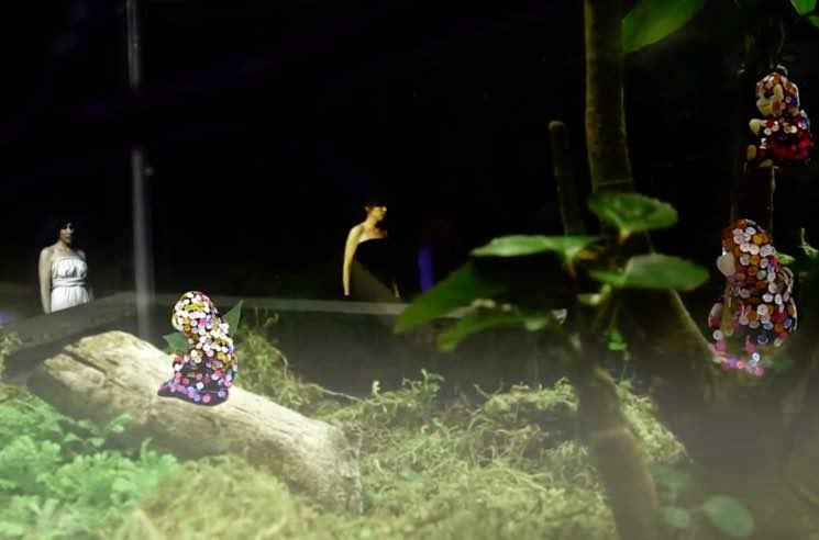 """Snowblink """"Exotic Bird"""" (video)"""