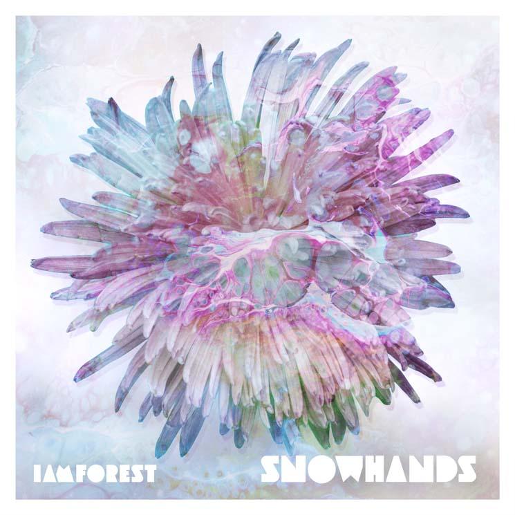 iamforest Snowhands