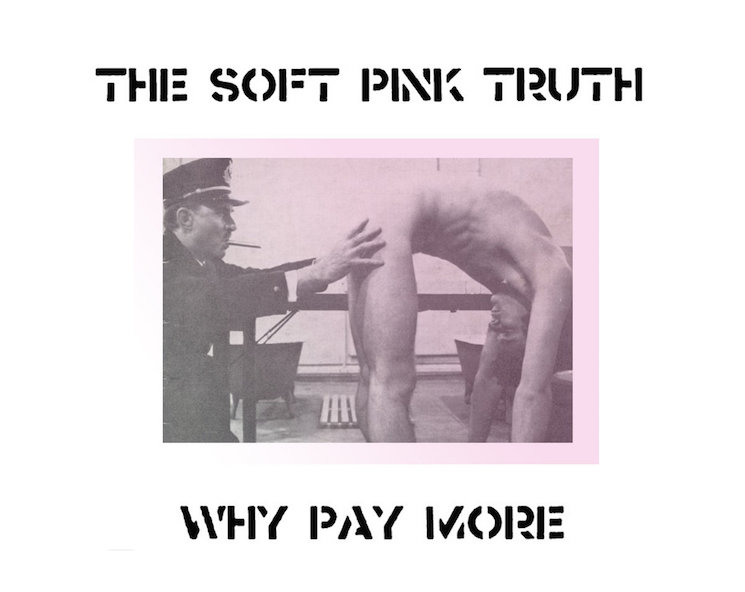 The Soft Pink Truth Builds New Album Out of YouTube Audio Samples