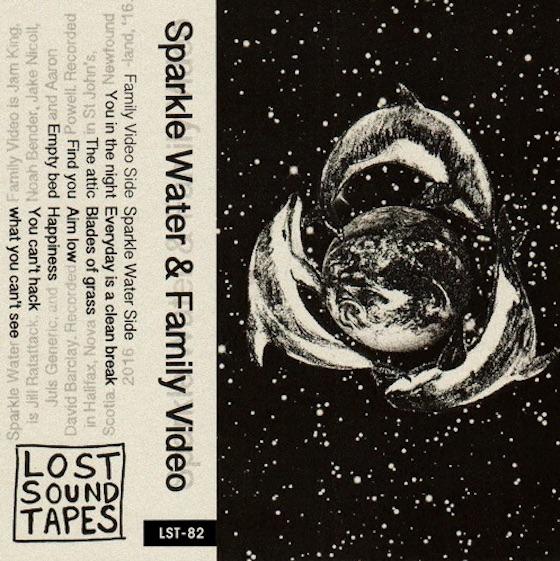 Sparkle Water / Family Video Split Tape (EP stream)