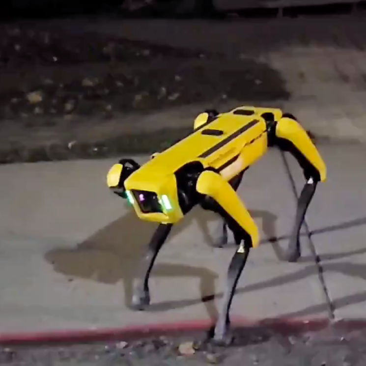 A 'Black Mirror'-Style Robot Dog Was Spotted in the Wild and People Are Freaking Out
