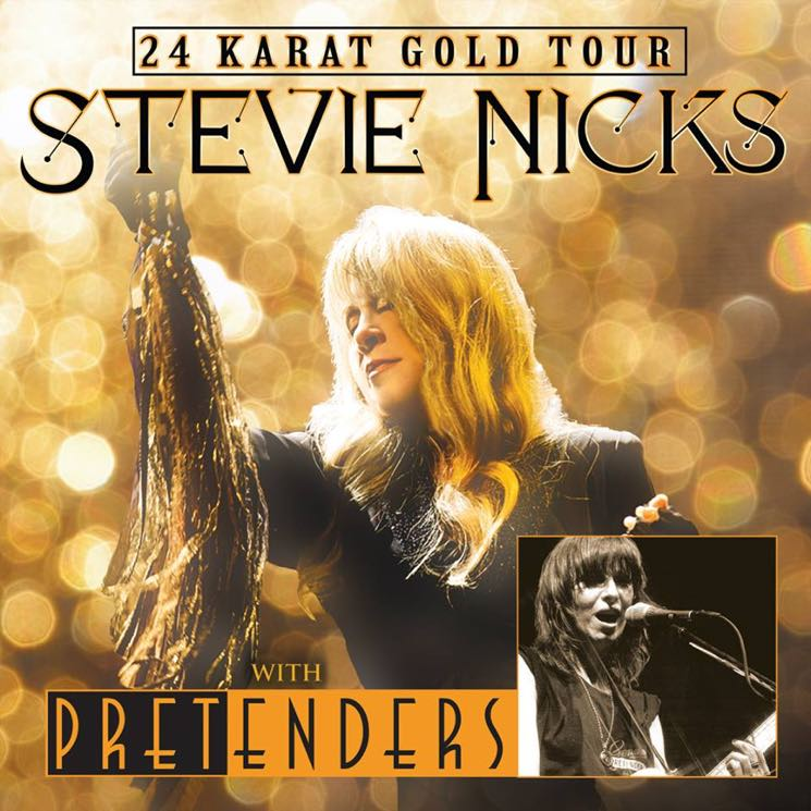 ​Stevie Nicks Maps Out '24 Karat Gold Tour' with Pretenders