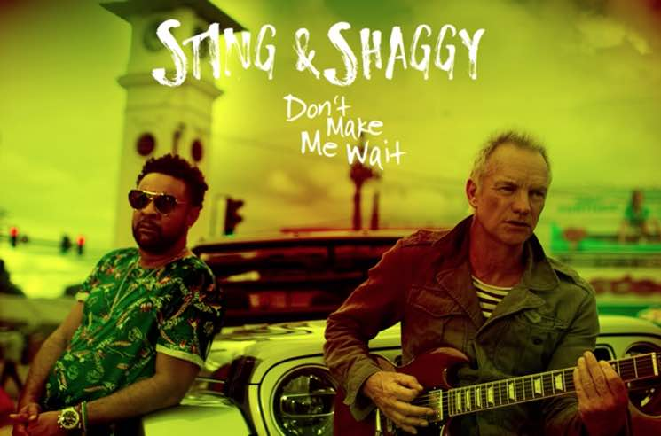 Sting and Shaggy are making a collaborative Carribean-influenced album