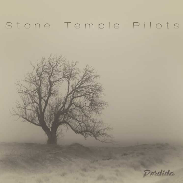 Stone Temple Pilots Announce Acoustic Album, Play Canada on Tour